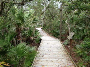 Boardwalk at the Atlantic Center for the Arts